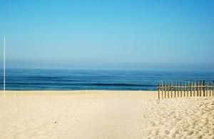 beach-123844_640